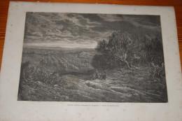 Espagne, Un Champ D'oliviers, Olivette, Campagne De Saragosse, Zaragoza, Gravure De 1868, Gustave Doré - Vieux Papiers