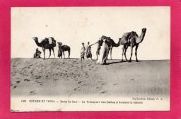MAROC Pittoresque, Transport Des Dattes Dans Le Sahara, Animée, (Idéale, P. S.) - Morocco