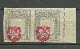 LITAUEN Lithuania 1919 Michel 37 U In Pair + ERROR * - Litauen