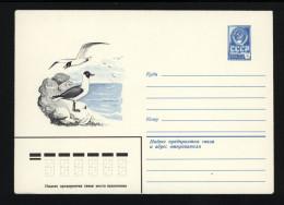 USSR 1982 Postal Cover Bird Black-headed Gull (137) - Covers & Documents