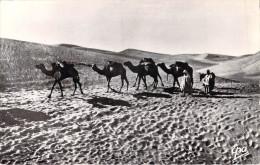Algérie >Scènes Et Types  Caravane Dans Les Dunes (Cpsm Photo Dentelée-Editions : Photo Africaines EPA 2132) * PRIX FIXE - Scènes & Types