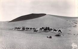 Algérie >Scènes Et Types  Caravane Dans Les Dunes (Cpsm Photo Dentelée-Editions : Photo Africaines EPA 4018) * PRIX FIXE - Scenes