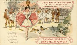CPA (publicitaire )  Grand Hotel De L Etablissement   PETIT Contrexeville    (album) - Publicité