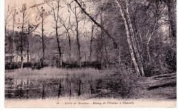 Etang De L'Ursine à Chaville - Forêt De Meudon - Chaville