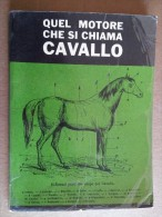 M#0N42 QUEL MOTORE CHE SI CHIAMA CAVALLO Uff.stampa Dell'UNIRE Corriere Dei Piccoli 1962 - Animali Da Compagnia