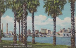Florida Tampa From Tropical Man Made Davis Islands