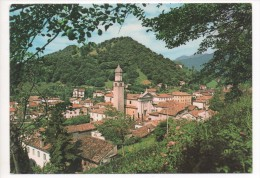 31 020    TARZO       ~ 1980 - Italia