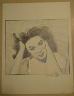 Dessin Au Crayon 1951-  Jeune Femme (2) - Dibujos
