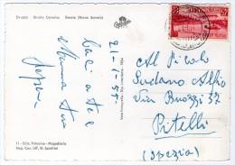 SOMALIA AFIS - STRUZZO - STRUTIO CAMELUS  GOREIA (NOME SOMALO) - 1955 - Somalia