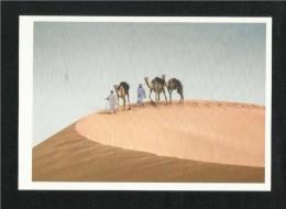 United Arab Emirates UAE Abu Dhabi Picture Postcard Two Men Lead Their Prized Camel View Card - Dubai