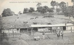 Plessis-Robinson-Piquet - La Ferme Et La Prairie - Edition R. Javelle - Carte Non Circulée - France