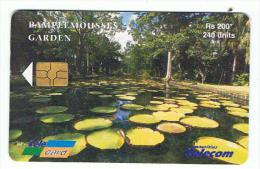 Télécarte  Mauritius   Pamplemousses - Mauritius