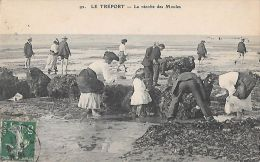CPA  LE TREPORT  ** LA RECOLTE DES MOULES - Le Treport