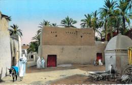 Algérie Scènes Et Types Dans L'Oued (Cpsm Photo Dentelée-- Editions : C.A.P. CAP ND° 691) * PRIX FIXE - Scènes & Types