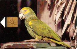 BONAIRE 20 U - 5 FL BIRD YELLOW-SHOULDERED PARROT CHIP  BON- C10 READ DESCRIPTION !! - Antilles (Netherlands)