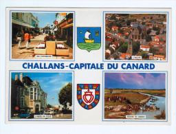9258   CPM : CHALLANS  : Jolie Multivues  De La Capitale Du Canard - Challans