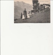 CARTE POSTALE -DANS LES ALPES -UN PATURAGE - Viehzucht