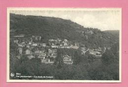 C.P. Méry  :  Vue  Panoramique  :  Les  Fonds  De  Costand - Esneux