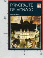 CARTOLINA NV MONACO - MONTE CARLO - Le Casinò - 10 X 15 - Monte-Carlo