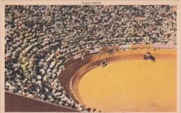 Mexico Tijuana Bull Fight Plaza