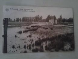 Sint Amands Emiel Verhaerens Graf - Buggenhout