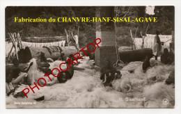 SISAL-Agaven-Hanf-Chanvre-Agriculture-Deutsche Kolonien-Ostafrika-Serie III/11-Nicht Gelaufen-MILITARIA - Ehemalige Dt. Kolonien