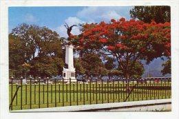 TRINIDAD & TOBAGO - AK 262111 Printed In Tunapuna - Flamboyant Near War Memorial - Trinidad