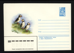 USSR 1981 Postal Cover Bird Puffin  (152) - Birds