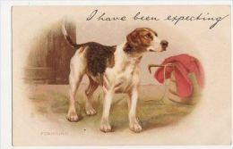 Helena J. Maguire, Foxhound, Tuck Write Away 270 Chromo Postcard, B118 - Animaux & Faune