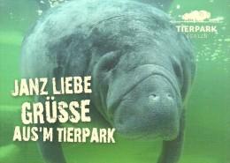 SEA COW * SIRENIA * WEST INDIAN MANATEE * BOVINI * BISON * BUFFALO * ANIMAL * ZOO * Tierpark Berlin 02 03 * Germany - Autres