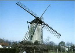 KNOKKE (W.Vl.) - Molen/moulin - Historische Opname Van Siska´s Molen In 1960 Met Wieken. Thans Romp. - Knokke