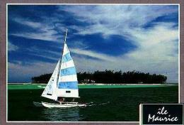 Divers       H15       Blue Bay - Mauritius