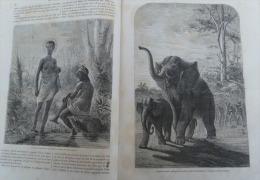 TOUR DU MONDE 1866:L'AFRIQUE AUSTRALE/LIVINGSTONE COUR ROI SHINTE/VILLE DE LOANDA/MARCHANDS D'ESCLAVES/MOUCHE TSETSE - Zeitschriften - Vor 1900