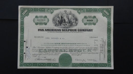 USA - Pan American Sulphur Company - Nr:NC179103/ 1967 - 100 Shares - Look Scans - Hist. Wertpapiere - Nonvaleurs