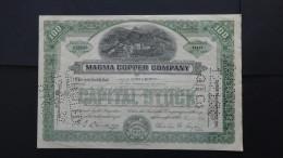 USA - Magma Copper Company - Nr:C35546/ 1938 - 100 Shares - Look Scans - Bergbau