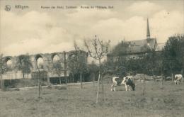 BELGIQUE HEKELGEM / Ruines De L'Abbaye / - België