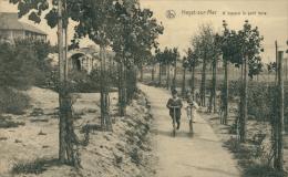 BELGIQUE HEYST  / à Travers Le Petits Bois / - Heist
