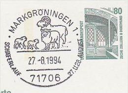 1992 Markgroningen GERMANY COVER Illus SHEEP SHEPHERD FESTIVAL EVENT Pmk Postal STATIONERY Card - Farm