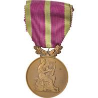 France, Médaille D'honneur Des Sociétés Musicales, Medal, 1924 - Militaria