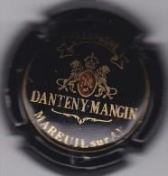 DANTENY MANGIN N°7 - Champagne