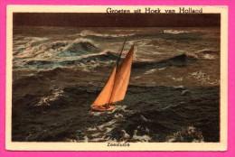 Groeten Uit Hoek Van Holland - Zeestudie - Luxe Paperwarenhandel V.H. ROUKES & ERHART - Colorisée - Hoek Van Holland