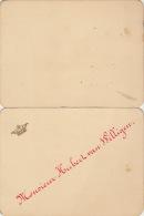 Menu Pour Senateur Hubert Van Willigen Couronne 1893 - Menus