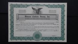 USA - Watson Catfish Farms, Inc. - Design/dummy - Look Scans - Hist. Wertpapiere - Nonvaleurs