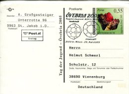 5397 Austria, Special Stationery And Postmark  2005 Mineral,  Pyrop, - Minerals