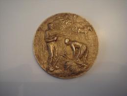 Médaille ARGENT Comice Agricole D'Avallon - Other