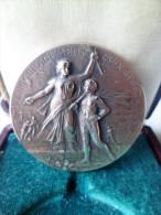 Médaille D'Encouragement Aux Sports - Signée F.Rasumny - BRONZE - XXéme - Professionnels / De Société