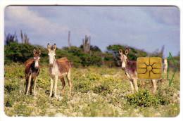 ANTILLES NEERLANDAISES BONNAIRE REF MV CARDS BON-13 Année 1999 ANE - Antilles (Netherlands)