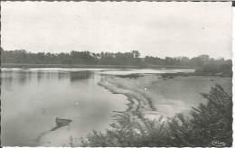 CPSM 41 - Avaray - La Loire - Unclassified