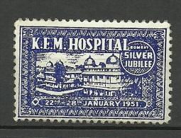 Hospital 1951 Vignette Charity Poster Stamp - Cinderellas