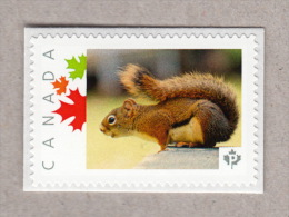 SQUIRREL Picture Postage Stamp MNH Canada 2016 [p16/02-2sn1] - Wild